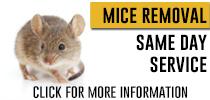 mice-control-info