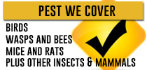 pest-we-cover