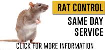 rat-control-info