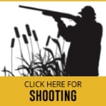 shooting-thumbnail