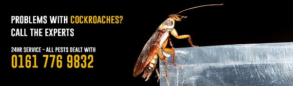 cockroach inner banner