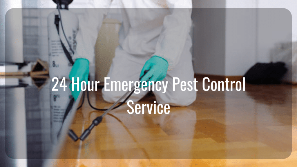 Hindley Green 24 Hour Pest Control Service