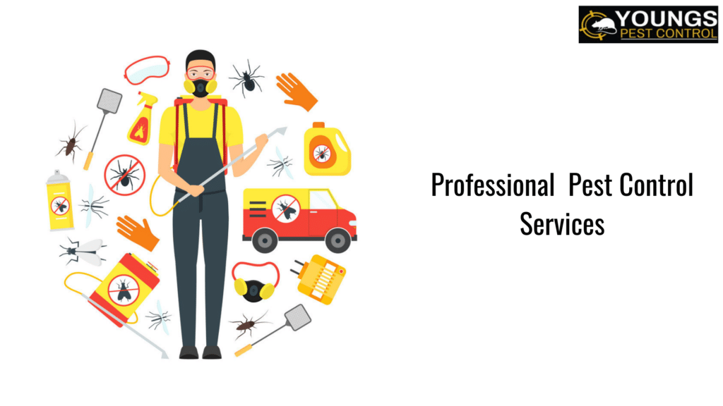 Importance of Professional pest control service