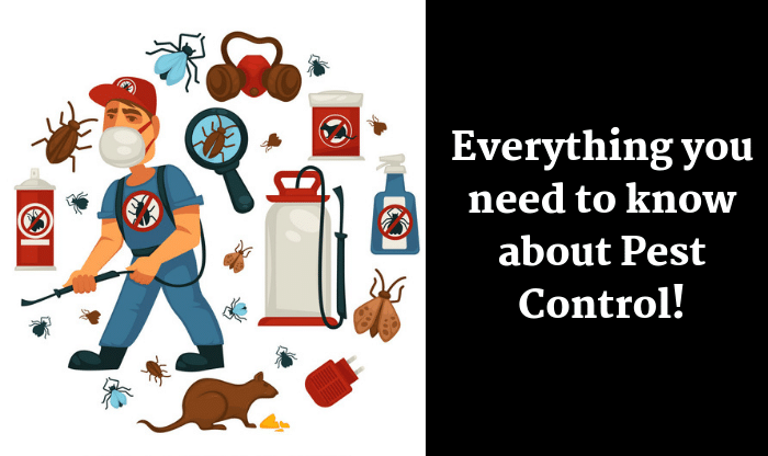 Everything About Pest Control