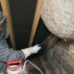 Shevington Moor wasp nest removal