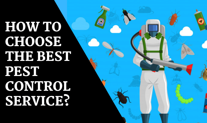 How To Choose The Best Pest Control Service_ (1)