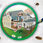 Swinley Pest Control