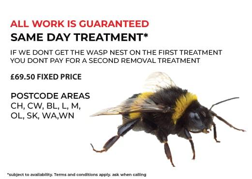 bumblebee control