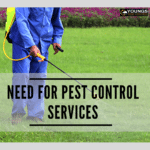Higher and Lower Broughton Need For Pest Control Services