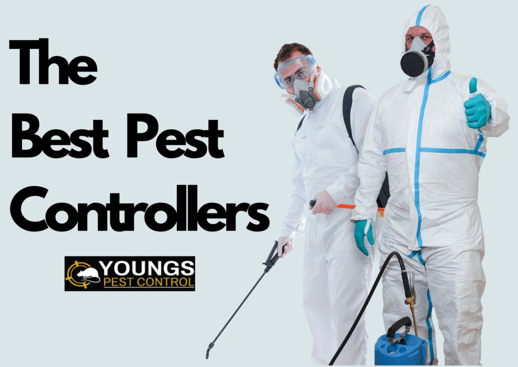 The Best Pest Controllers