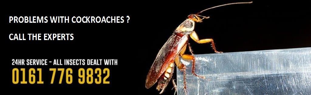 home-banner-2-roach