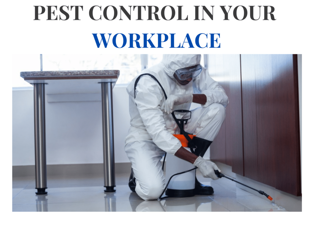 Pest Control In Your Workplace